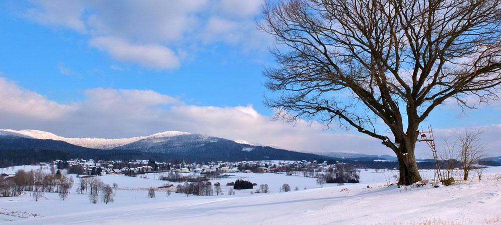 Arnbruck-Ortsansicht-Winter-Foto-Jilek.jpg
