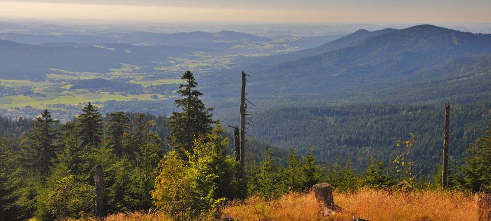 Heugstatt-Herbst-Foto-Jilek-2.jpg