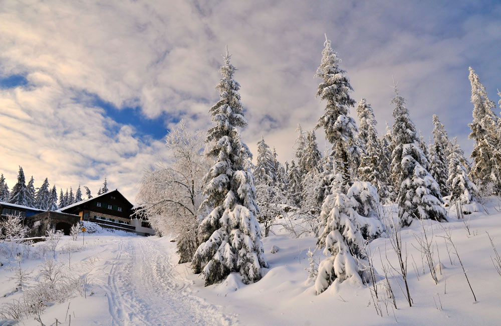 Kaitersberg--Kötztinger-Hütte-Winter-Foto-Jilek.jpg